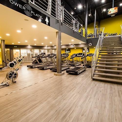 Vstup do fitness